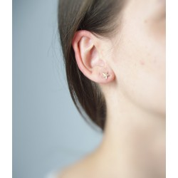 Boucles oreilles étoile mer